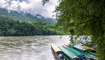 Environmental Policy Boats River Rainforest