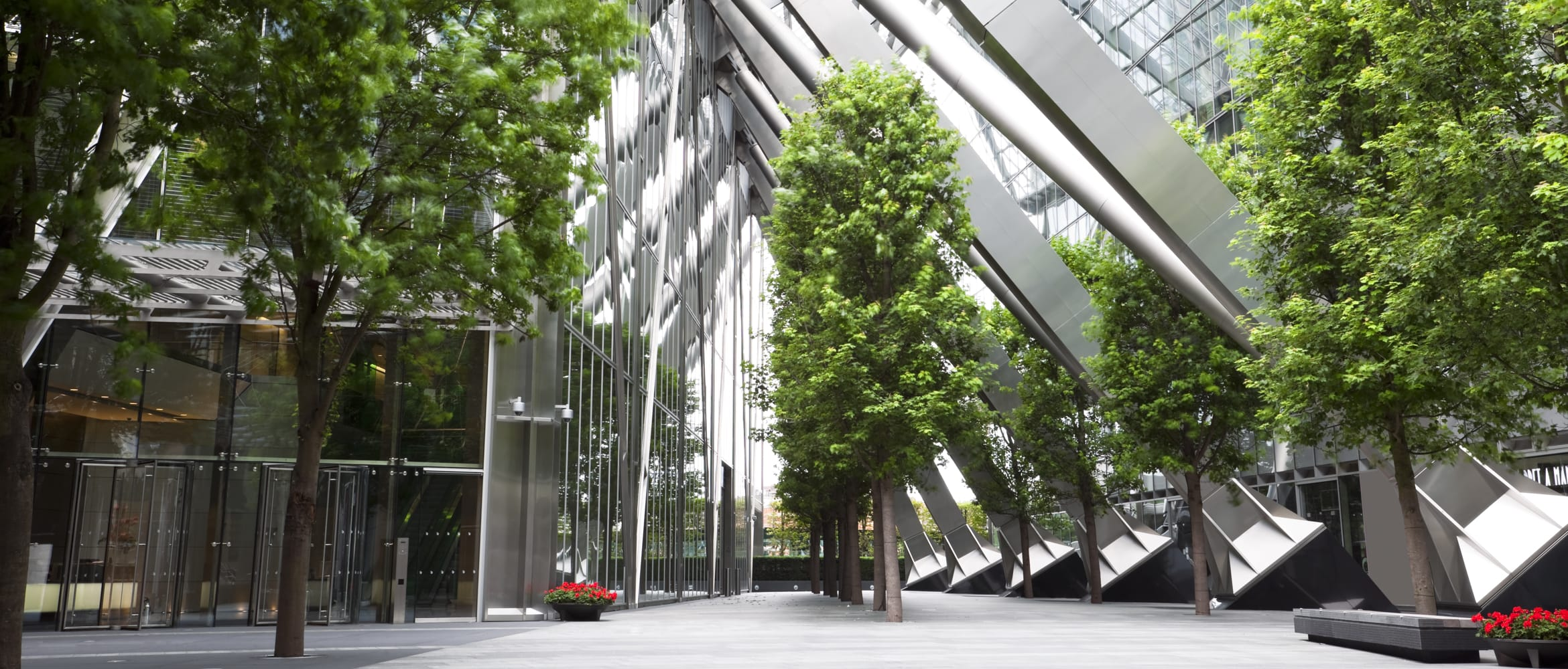 Trees lining an undercover glass and steel structure in a public area of a commercial office space