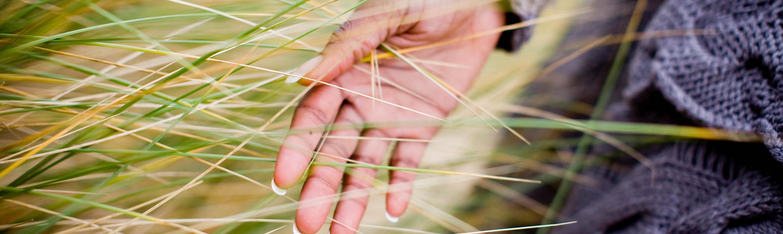 hand brushes grass
