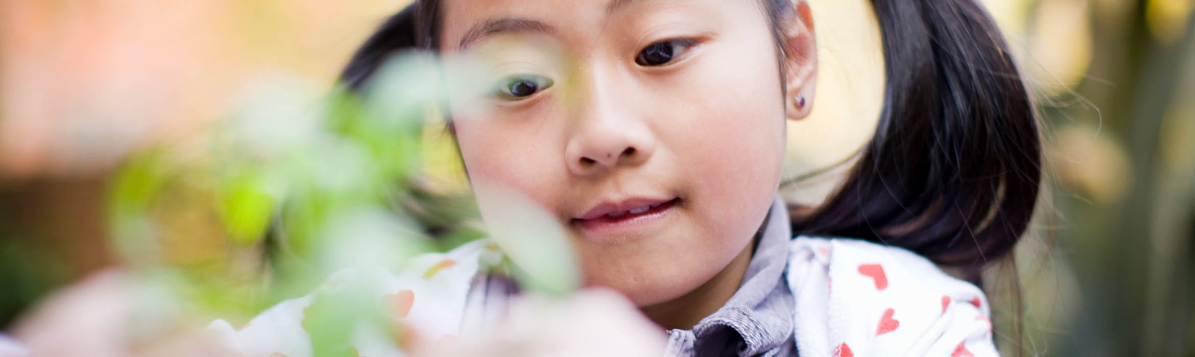 child plays with a plant