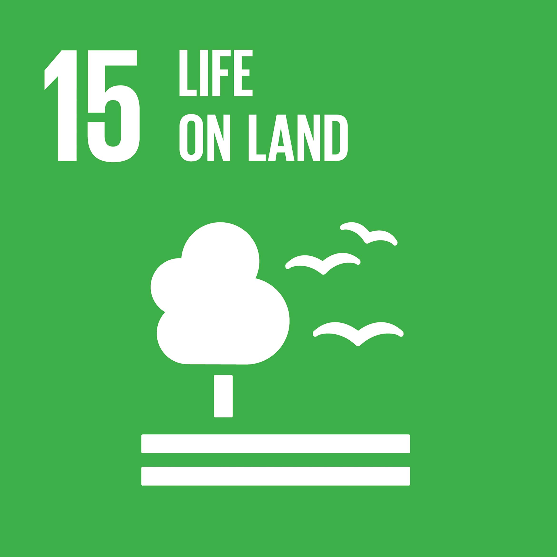 SDG-life-on-land