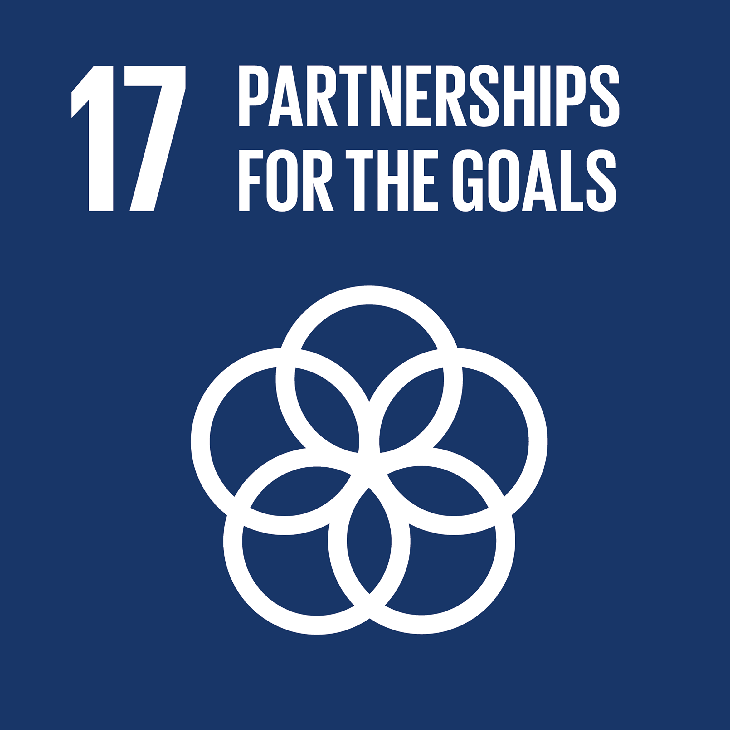 SDG-partnerships-for-goals