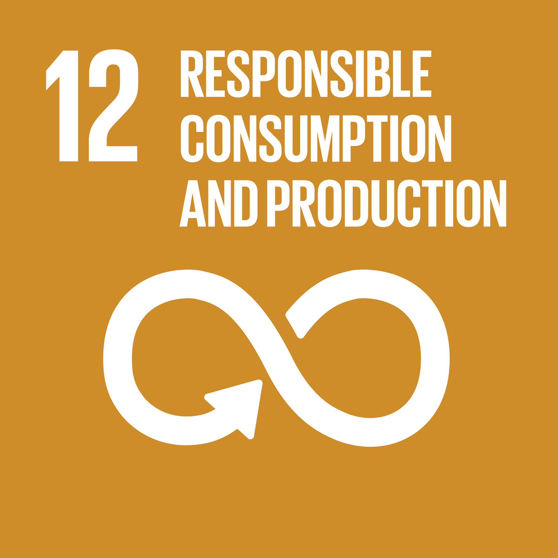 SDG-responsible-consumption-production