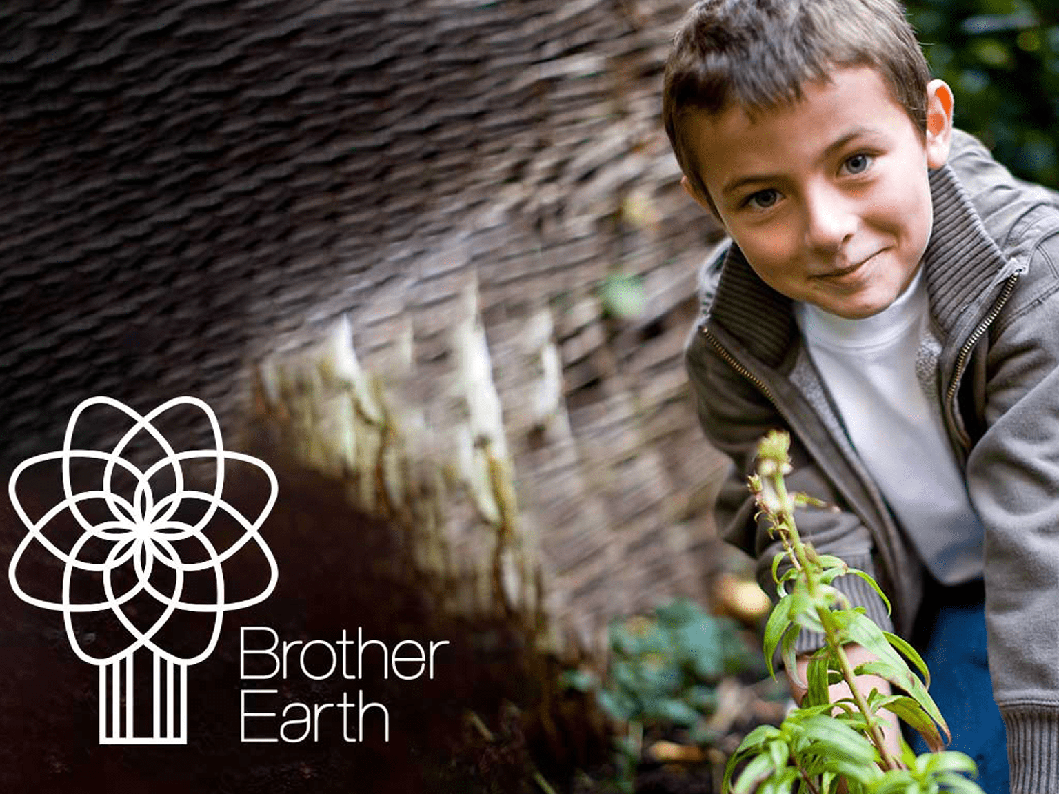Brother Earth - small boy looking at plant