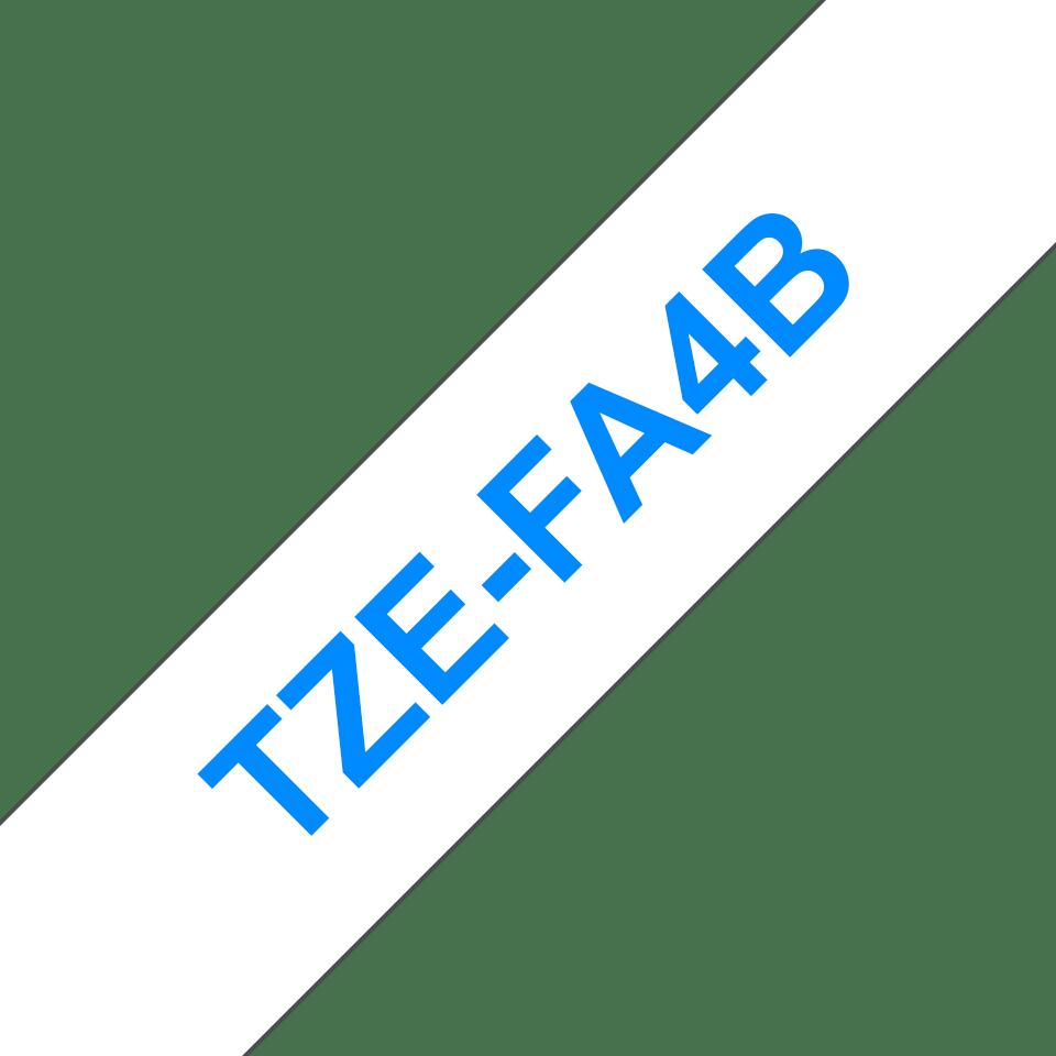 TZe-FA4B